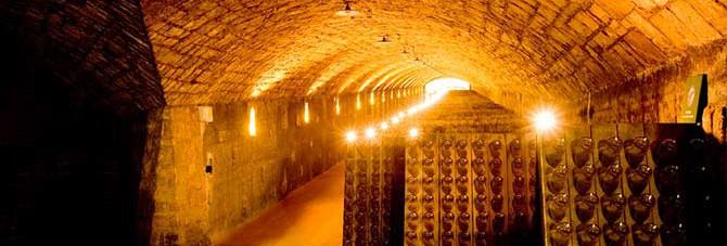 Ca-del-Bosco-wine-cellar-10005065
